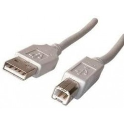 Cable USB B